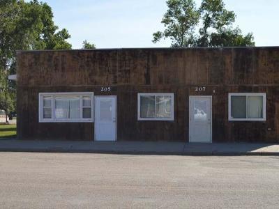 Zap Duplex For Sale: 205/207 Main St