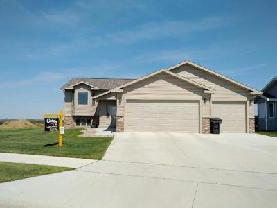 Mandan Single Family Home For Sale: 3907 Trident Court