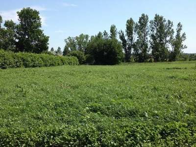 Hazen ND Residential Lots & Land For Sale: $12,900