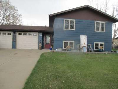 Hazen Single Family Home For Sale: 951 Antelope Dr
