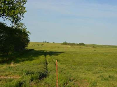 Residential Lots & Land For Sale: On Hwy 49