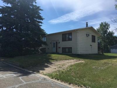 Mercer County Single Family Home For Sale: 409 Van Slyke