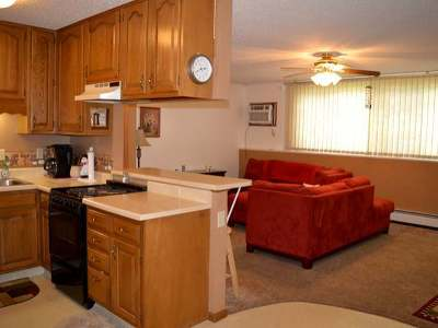 Bismarck Condo/Townhouse For Sale: 155 Boise Ave S #4