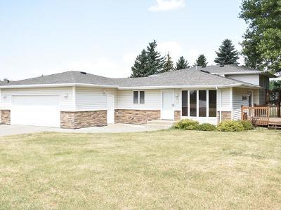 Wilton Single Family Home For Sale: 410 Minnie Avenue