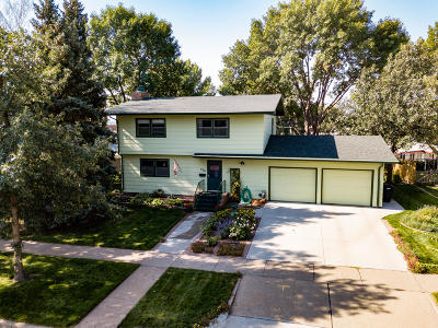 Bismarck Single Family Home For Sale: 520 Gary Avenue