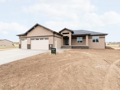 Bismarck Single Family Home For Sale: 5341 Mica Drive