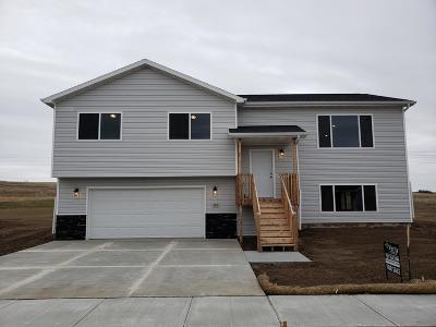 Mandan Single Family Home For Sale: 603 Cobblestone Loop SW