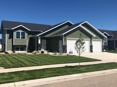 Bismarck Single Family Home For Sale: 3911 Meridian Drive