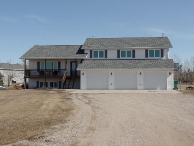 Bismarck Single Family Home For Sale: 6905 Endicott Drive