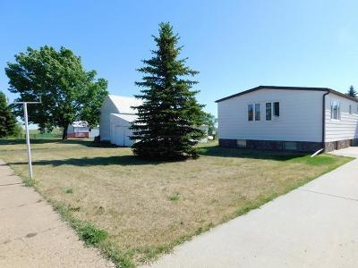 Flasher Single Family Home For Sale: 419 College Street