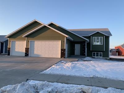 Bismarck Single Family Home For Sale: 3826 Leighton Drive