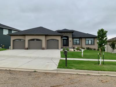 Bismarck ND Single Family Home For Sale: $669,900