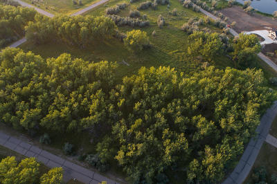 Residential Lots & Land For Sale: 3336 Gallatin Drive