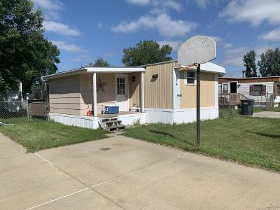 Bismarck Single Family Home For Sale: 124 Delaware Street