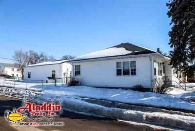 Bismarck Single Family Home For Sale: 1046 Riverview Avenue