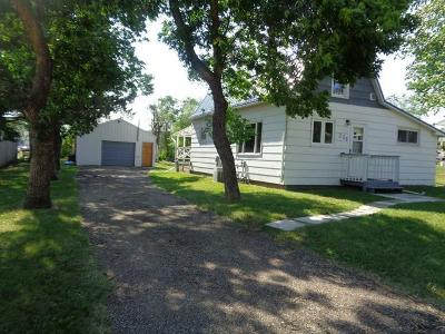 Flasher Single Family Home For Sale: 208 Court Street