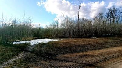 Residential Lots & Land For Sale: Near Loon Lake