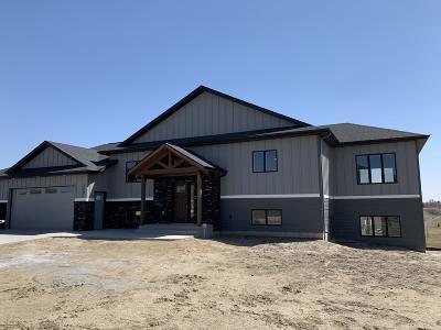 Bismarck Single Family Home For Sale: 2501 Del Rio Drive