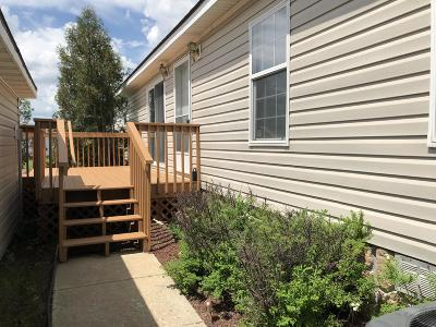 Bismarck Single Family Home For Sale: 3906 Avondale Drive
