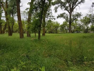Mandan Residential Lots & Land For Sale: L1 B1 River Place Drive N