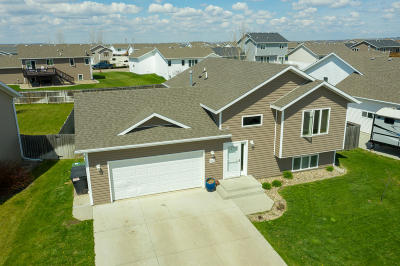 Mandan Single Family Home For Sale: 3001 Percheron Drive SE