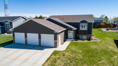 Bismarck Single Family Home For Sale: 3919 Lone Peak Drive