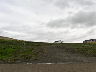 Bismarck, Mandan Residential Lots & Land For Sale: 832 Parker Ranch Road