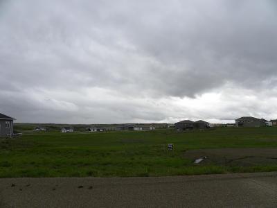 Bismarck, Mandan Residential Lots & Land For Sale: 833 Parker Ranch Road