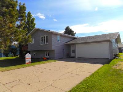 New Salem Single Family Home For Sale: 307 1st Street N