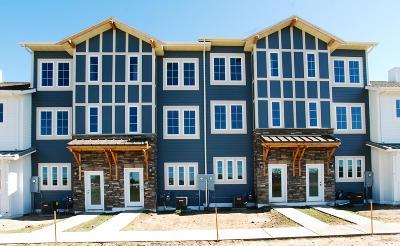 Lincoln Condo/Townhouse For Sale: 3167 Sullivan Loop