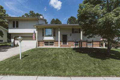 Bismarck Single Family Home For Sale: 336 Telstar Drive