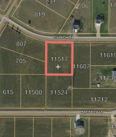 Residential Lots & Land For Sale: 11517 Creek Top Road