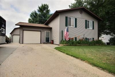 Lincoln Single Family Home For Sale: 53 Custer Drive