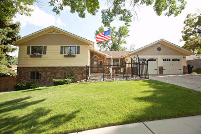 Bismarck Single Family Home For Sale: 501 Aspen Avenue
