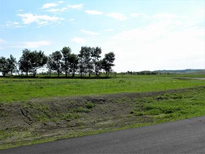 Residential Lots & Land For Sale: 14174 Parker Ranch Road