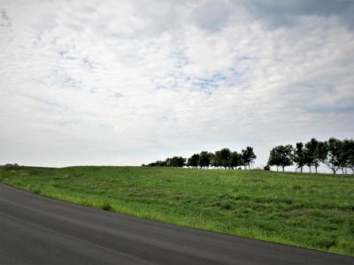 Residential Lots & Land For Sale: 14584 Parker Ranch Road