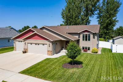 Bismarck Single Family Home For Sale: 206 Marietta Drive