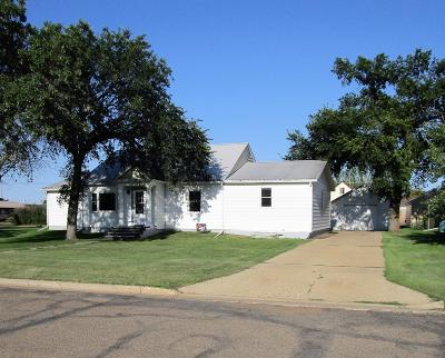 Single Family Home For Sale: 306 3rd Street S