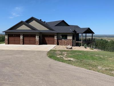 Bismarck ND Single Family Home For Sale: $900,000