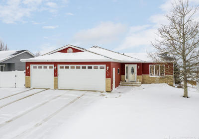 Bismarck Single Family Home For Sale: 4620 Kost Drive