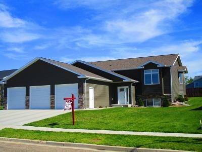 Bismarck Single Family Home For Sale: 3919 Lone Peak Drive