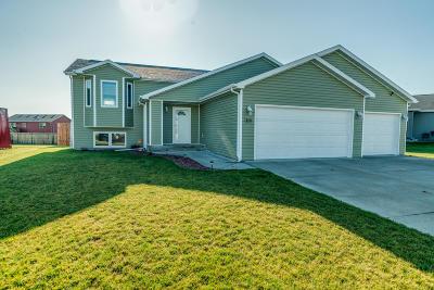 Mandan Single Family Home For Sale: 3116 Percheron Drive SE