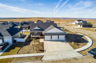 Bismarck Single Family Home For Sale: 4800 Marsh Hawk Drive