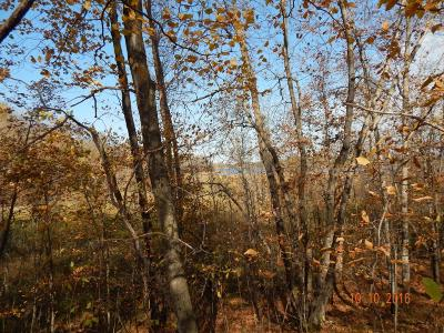Detroit Lakes Residential Lots & Land For Sale: Johnson Trail