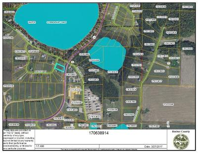 Audubon Residential Lots & Land For Sale: Lakeview Lane --