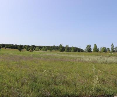 Detroit Lakes Residential Lots & Land For Sale: 1386 Long Lake Drive