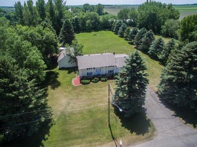 Glyndon Single Family Home For Sale: 121 7 Street SW