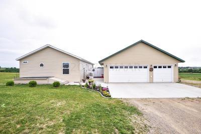 Perham Single Family Home For Sale: 39123 418 Avenue