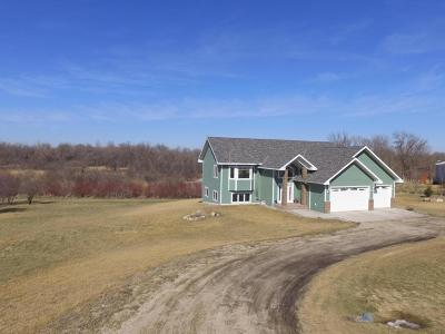 Hawley Single Family Home For Sale: 364 248 Street N