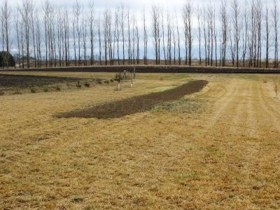Pelican Rapids Residential Lots & Land For Sale: S Sand Lake Road